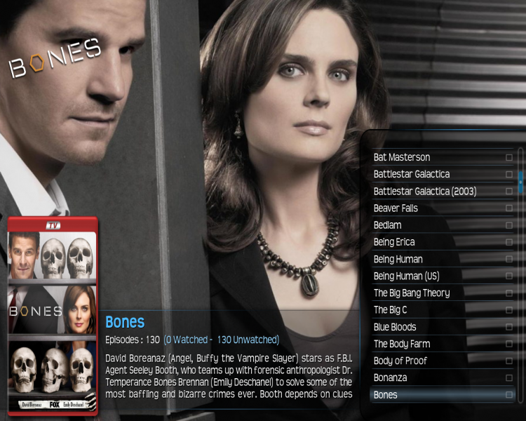 File:308.xbmc.with.logo.png